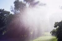 173_botanicgardenwater1.jpg