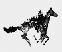 270_horse.jpg