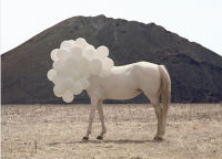 37_andrea-galvani-1.png